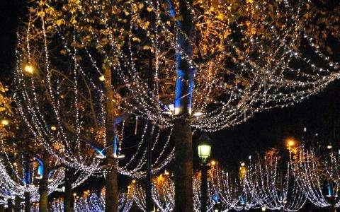 Vitrines et illuminations de Noël, un rêve éveillé