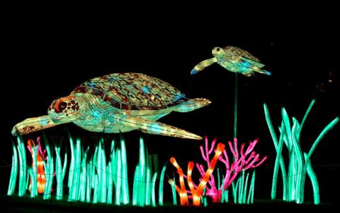 Espèces en voie d'illumination at the Jardin des Plantes