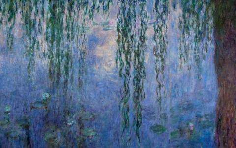 The Water Lilies. American Abstract Painting and the last Monet